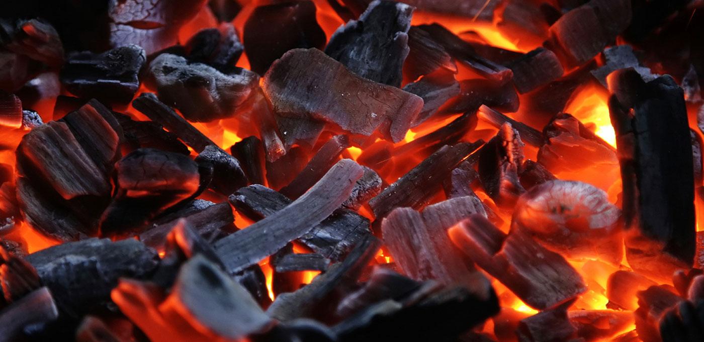 Ziher-drveni-ugljen